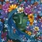 amanda clark - goddess